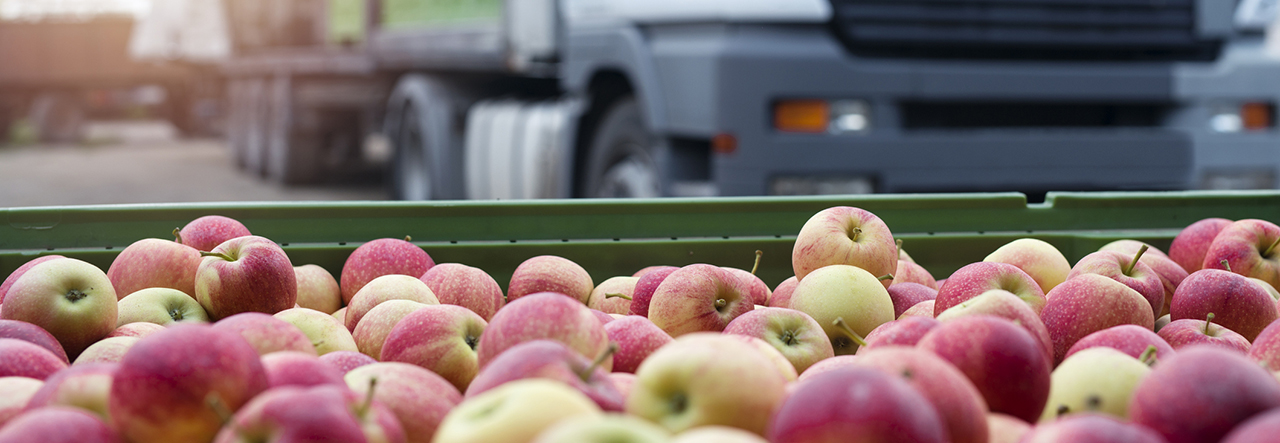 Container full of apples with a lorry in the background
